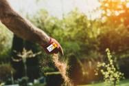 Manejo químico do solo antes do plantio: por que é importante fazer?