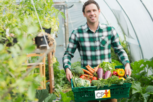 Agricultura natural: o que é e em que se baseia?   Artigos Cursos CPT