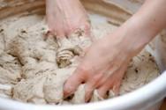 Melhoradores são substâncias que auxiliam na elaboração do pão.