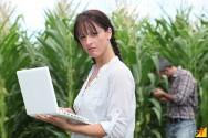 Como funciona a agricultura moderna