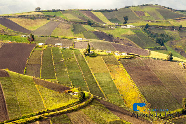 Saiba mais sobre avaliação de propriedade rural