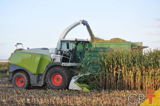 Investir em agroindústria, agricultura ou pecuária? Qual o melhor negócio?