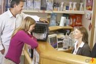 Pet shop: quais produtos são os mais vendidos?