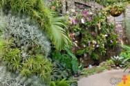 Dicas para implantação de jardim vertical