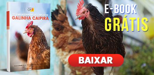 Brinde: Ebook Galinha Caipira