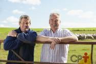 Registros zootécnicos na criação de ovelhas: isso é mesmo necessário?