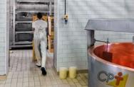 Vai construir uma queijaria? Atenção especial à Barreira Sanitária!