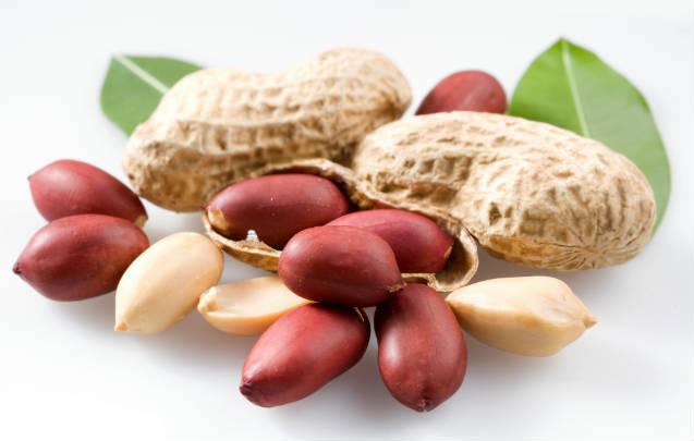 Processamento caseiro de pasta de amendoim