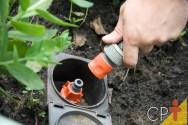 Quais as melhores formas de irrigação em frutíferas?