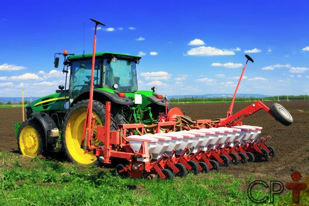 Quer plantar cenouras em grande quantidade e em pouco tempo?   Artigos Cursos CPT