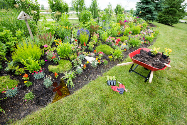 Uma renda extra para ganhar na primavera? Jardinagem!   Artigos Cursos CPT