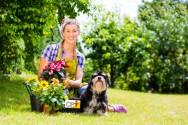 Projetando um jardim ecológico? Saiba mais sobre ele!