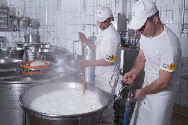 Afinal, leite pasteurizado tem ou não tem vitaminas e proteínas?   Artigos Cursos CPT