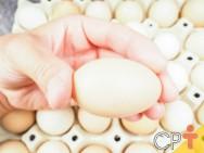 Como avaliar a qualidade do ovo de galinha