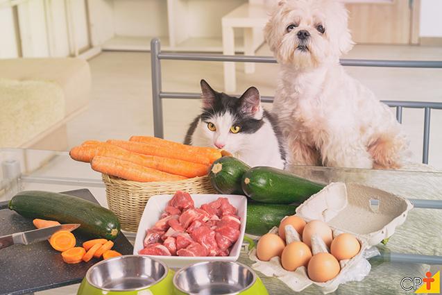 Cão e gato com alimentos naturais