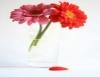 Como conservar flores