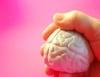 Memória ganha reforço com alimentos certos