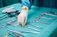 Vai auxiliar o veterinário em cirurgias? Leia e aprenda!