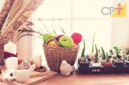 Dicas para fazer frutas em parafina