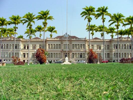 Primavera em Viçosa: conheça os belos jardins da UFV!