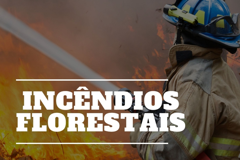 Responda: O que significa ou o que você entende por incêndios florestais?   Artigos Cursos CPT