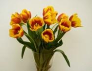https://cptstatic.s3.amazonaws.com/imagens/enviadas/materias/materia2597/m-como-conservar-flores.jpg