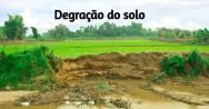 4 motivos para a degradação do solo. Evite-os!