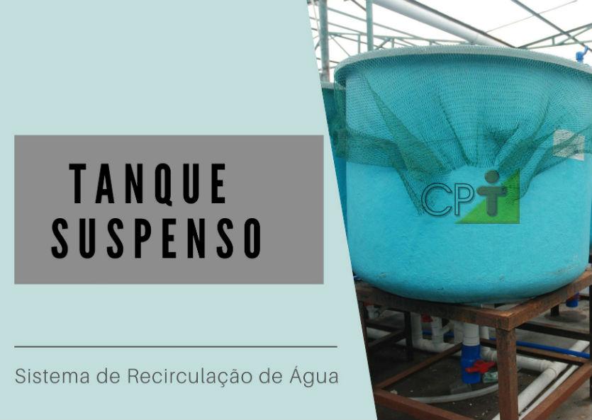 Sistema de Recirculação de Água (RAS): qual tanque usar?   Artigos Cursos CPT