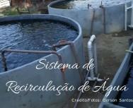 Piscicultura: como o Sistema de Recirculação de Água (RAS) funciona?