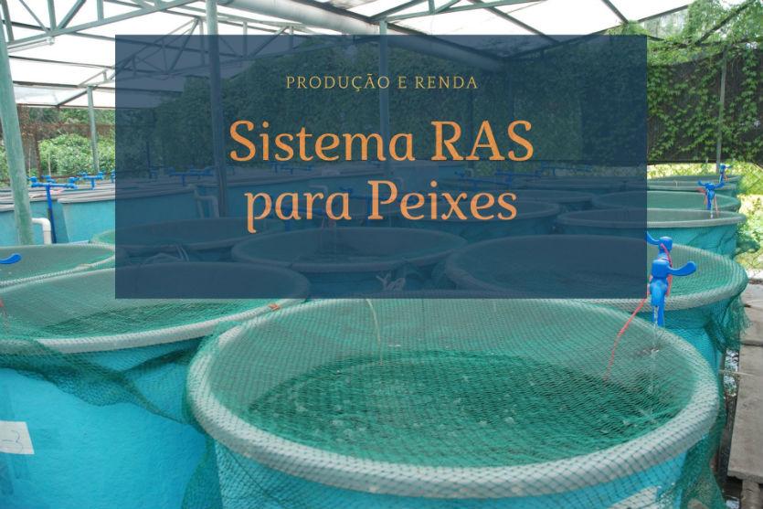 Sistema RAS para peixes: como garantir produção e renda?   Artigos Cursos CPT