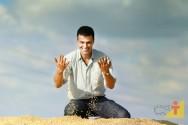 Agronegócio: segmentos e produtos mais rentáveis
