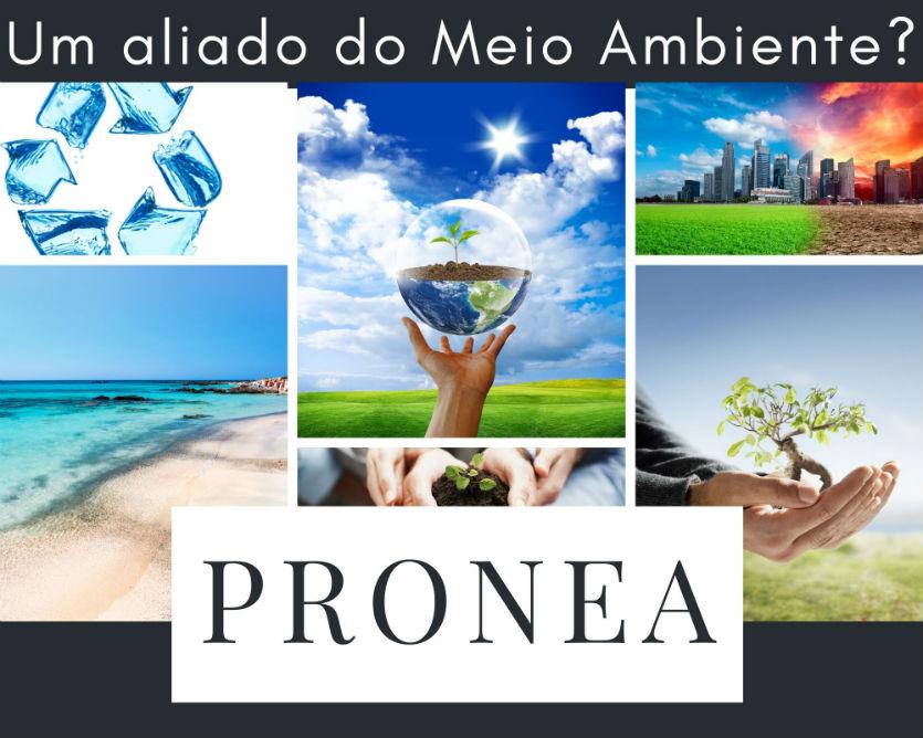 Um aliado do Meio Ambiente? Conheça o ProNEA!   Artigos Cursos CPT