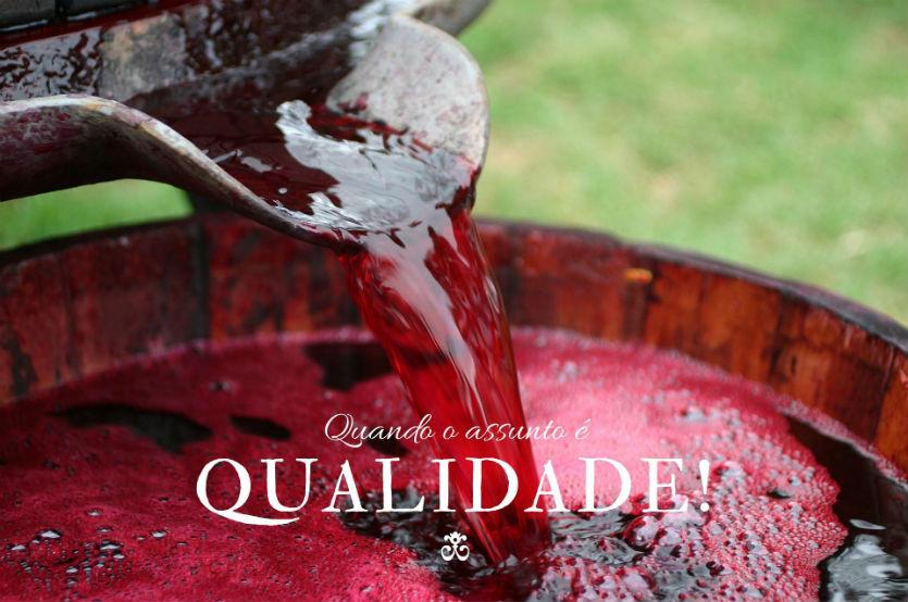 Fatores humanos ou naturais, a que se deve a qualidade do vinho?   Artigos Cursos CPT