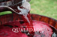 Fatores humanos ou naturais, a que se deve a qualidade do vinho?