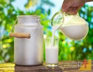 Qualidade do leite: resfriamento e transporte