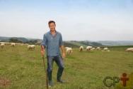 Qual a altura mínima da forrageira para a alimentação de ovinos?