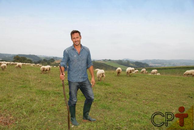Qual a altura mínima da forrageira para a alimentação de ovinos?   Dicas Cursos CPT
