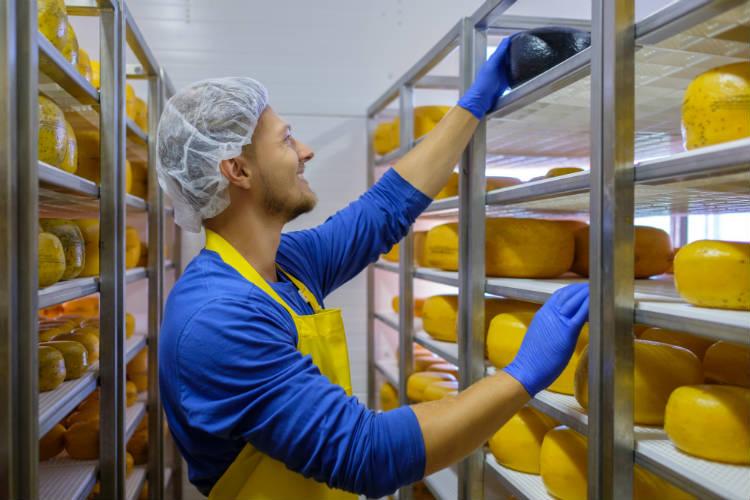 Confira boas práticas de higiene em queijarias
