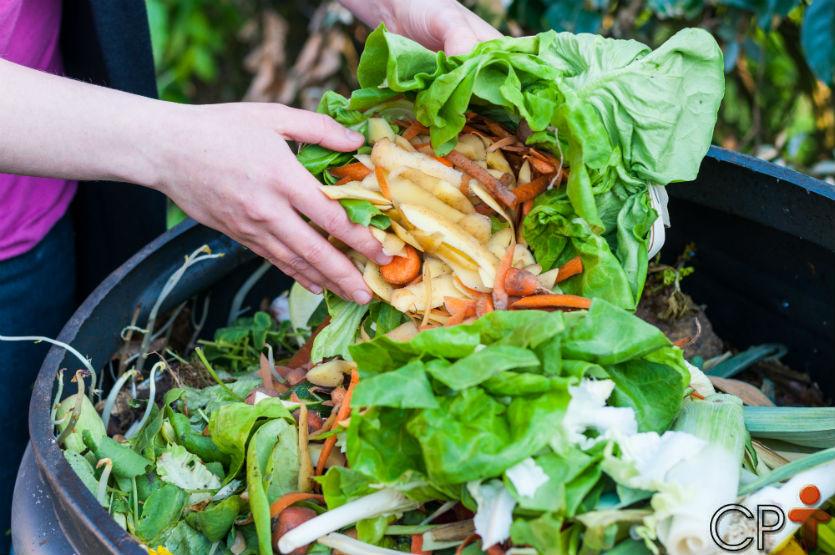 O que é e para que serve a compostagem do lixo orgânico?   Artigos Cursos CPT