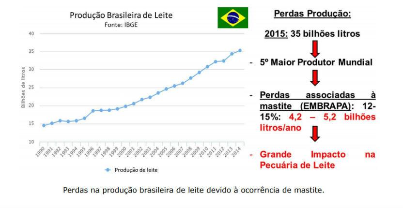 Perdas econômicas associadas à ocorrência da mastite nos rebanhos brasileiros