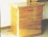 Equipamentos, o grande problema da produção de mel