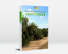 Implantação de Pomar e Cultivo de Frutíferas