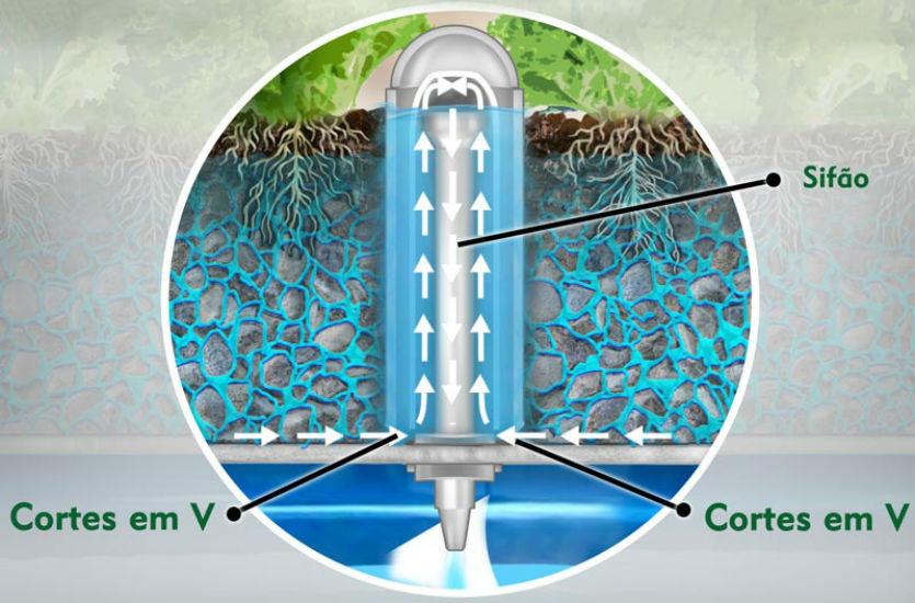 Sistema de Aquaponia: ambiente de cultivo em substrato   Artigos Cursos CPT