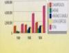 Cogumelos comestíveis, um mercado promissor