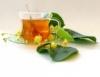Florais trazem benefícios para muitas doenças modernas