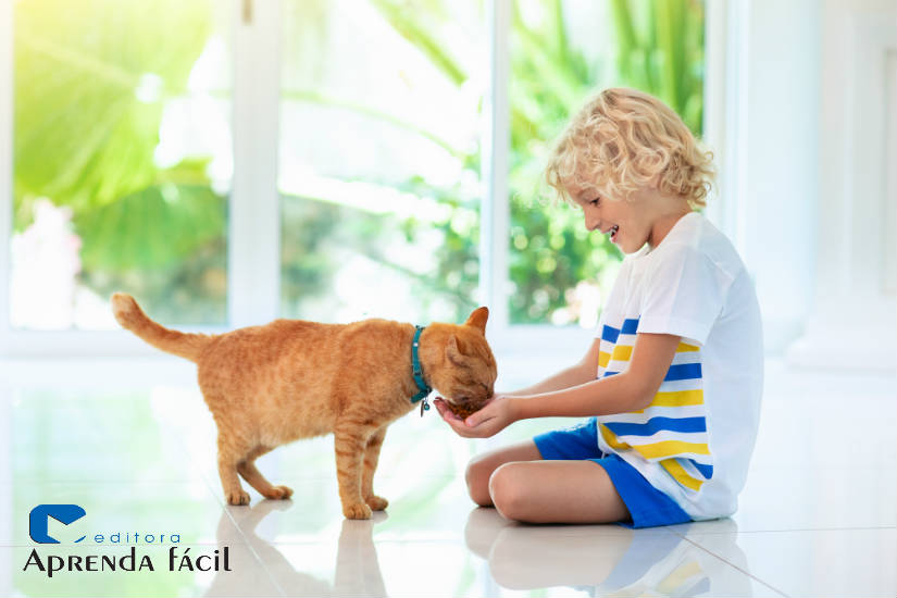 Quer montar um negócio lucrativo? Faça petiscos caseiros para gatos!