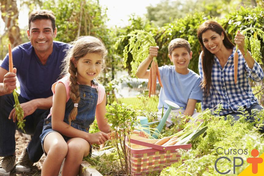 Tem espaço em casa? Cultive organicamente seu próprio alimento!   Artigos Cursos CPT