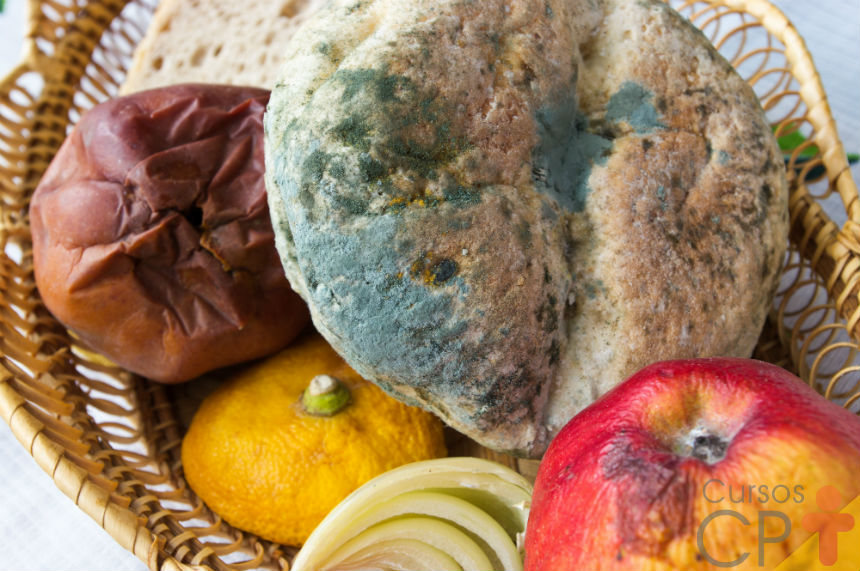 Alimentos contaminados? Entenda o binômio tempo e temperatura   Artigos Cursos CPT