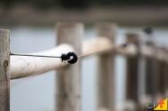 Quais são os principais tipos de cercas?