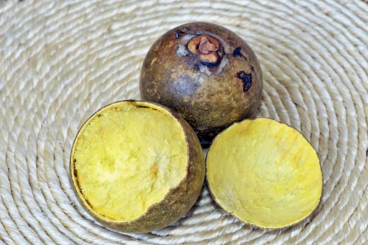 Despolpa do coco macaúba para produção de biodiesel